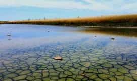 Pântanos de sal imagem de stock