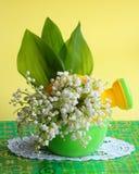 Pâques, carte de jour de mères - photo courante de fleur Images stock