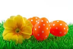 Pâques a coloré des oeufs sur l'herbe verte Images stock
