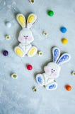 Pâques décorée Bunny Cookies Image libre de droits