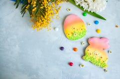 Pâques décorée Bunny Cookies Willow Paints et brosses sur un wh Images libres de droits