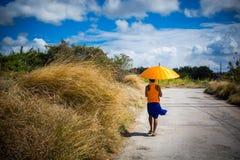 Pâques dans les Caraïbe Photo libre de droits