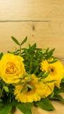 Pâques - fleurs avec des oeufs de pâques Photographie stock libre de droits