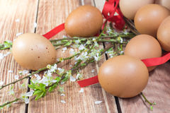 Pâques - Hen Eggs renversé avec des fleurs de ressort Image libre de droits