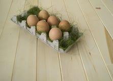 Pâques Mensonge d'oeufs dans le récipient pour des oeufs Herbe verte Photo libre de droits