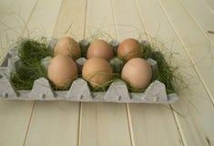 Pâques Mensonge d'oeufs dans le récipient pour des oeufs Herbe verte Images stock
