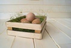 Pâques Mensonge d'oeufs dans le récipient pour des oeufs Herbe verte Photos stock