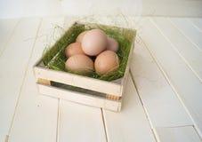 Pâques Mensonge d'oeufs dans le récipient pour des oeufs Herbe verte Photographie stock libre de droits