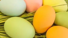 Pâques a peint des oeufs Photographie stock libre de droits
