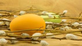 Pâques a peint des oeufs Image libre de droits