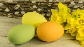 Pâques a peint des oeufs avec des saules de chatons Photo stock