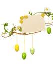 Pâques s'embranche - avec des oeufs de pâques, signe vide/carte, d'isolement Photos stock