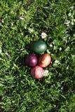 Pâques sur l'herbe Photographie stock libre de droits