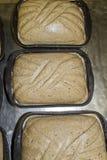 Pâte de pain Image stock
