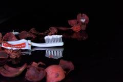 Pâte dentifrice sur le fond noir images stock