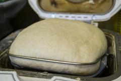 Pâte se levant dans la machine de pain image stock