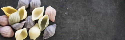 Pâtes colorées de conchiglie de bannière sur le fond gris images stock
