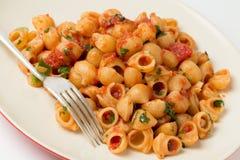 Pâtes et fourchette de macaronis d'Arrabbiata Photos stock
