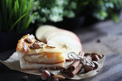Pâtisserie délicieuse avec de la cannelle et le fruit image libre de droits