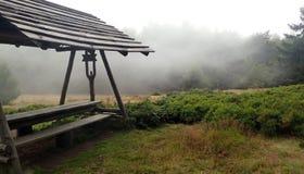 Pâturage de forêt avec l'abri Photographie stock
