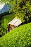Pâturage de haute montagne Photographie stock