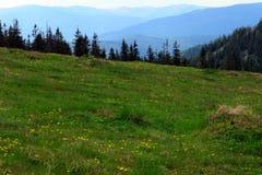Pâturage de montagne Photographie stock