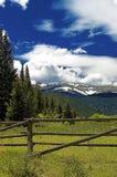 Pâturage de montagne du Colorado Images libres de droits