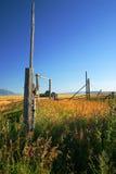 Pâturages d'automne Image stock
