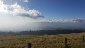 Pâturages de Maui Photos libres de droits