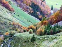 Pâturages et fermes d'automne dans la vallée du lac Klontalersee ou dans la vallée de Klontal image libre de droits