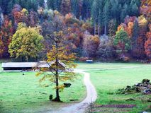 Pâturages et fermes d'automne dans la vallée du lac Klontalersee ou dans la vallée de Klontal images libres de droits