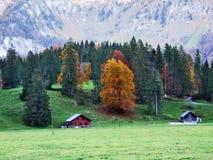 Pâturages et fermes d'automne dans la vallée du lac Klontalersee ou dans la vallée de Klontal photo stock