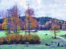 Pâturages et fermes d'automne dans la vallée du lac Klontalersee ou dans la vallée de Klontal image stock