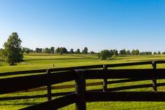 Pâturages verts des fermes de cheval Paysage d'été de pays image libre de droits