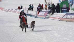 Półwysep Kamczatka dzieciaków rywalizacji Psi sanie Ściga się Dyulin Beringia zbiory