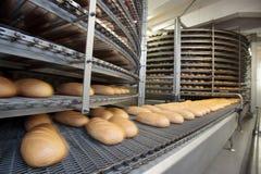 Pães cozidos na produção Foto de Stock Royalty Free