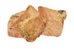 Pães velhos com crescimento do molde Fotos de Stock