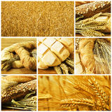 Pão. foto de stock