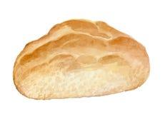 Pão apetitoso feito à mão - vetor da aquarela ilustração stock