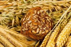Pão branco fresco Imagens de Stock