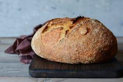 Pão caseiro fresco em um fundo cinzento crisp Francês produzido Pão na levedura Pão ázimo imagem de stock royalty free