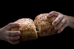Pão caseiro nas mãos da mulher foto de stock