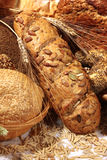 Pão com sementes diferentes Imagem de Stock Royalty Free