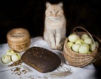 Pão de Brown Foto de Stock Royalty Free