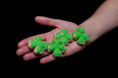 Pão-de-espécie da cookie dos trevos do dia do ` s de Patrick com mástique verde no close-up da palma Fotos de Stock Royalty Free