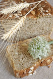 Pão de Oniony e sua fatia Fotos de Stock Royalty Free