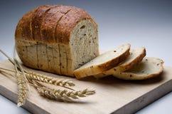 Pão de refeição inteira Imagem de Stock