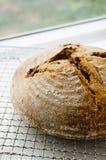 Pão de sourdough caseiro da grão inteira misturada do centeio-trigo Foto de Stock Royalty Free