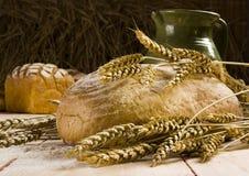 Pão de trigo inteiro Fotografia de Stock