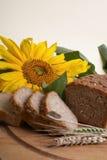 Pão de Wholemeal com girassol Imagens de Stock Royalty Free